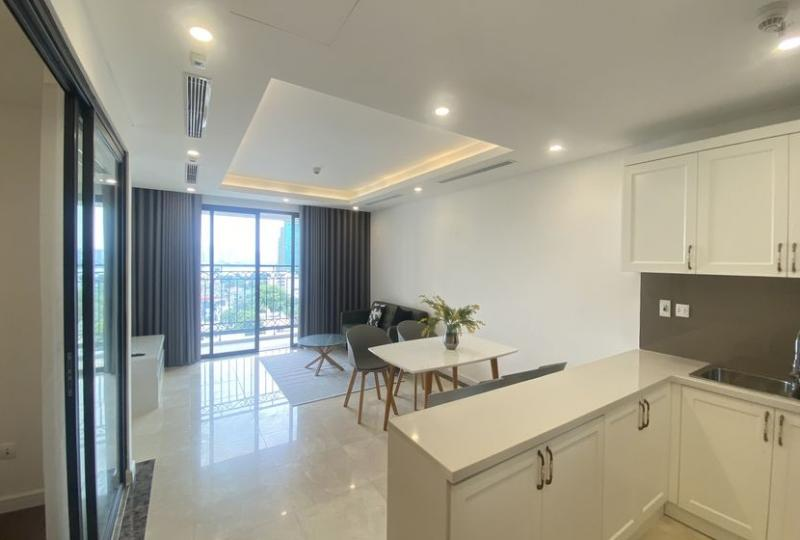 D Le Roi Soleil Xuan Dieu furnished apartment 2 bedrooms rental