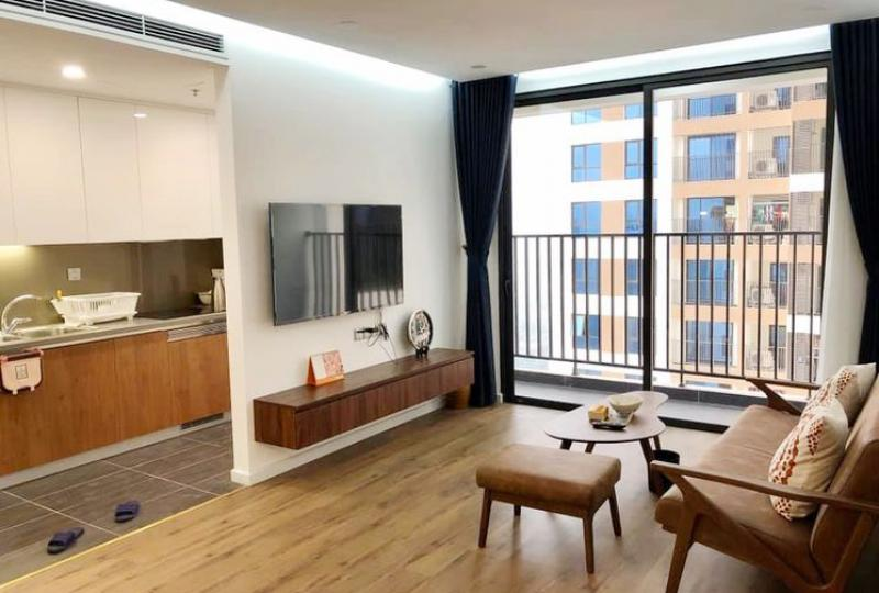 Rent 01 bedroom apartment in 6 Element project Hoang Quoc Viet