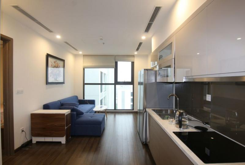 Rent furnished 01 bedroom apartment in Symphony Vinhomes