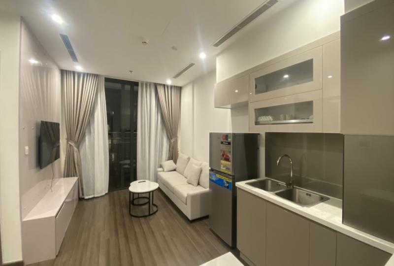 Spacious apartment for rent in Vinhomes Symphony 2bed 1bath